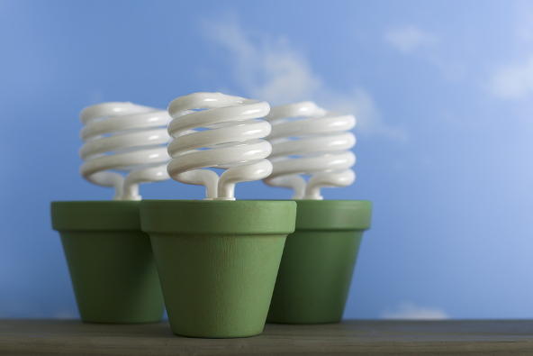 Energy-saving compact fluorescent light bulbs in painted clay flower pots.